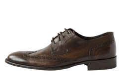 Brown leather shoe. Brown elegant leather men shoe Royalty Free Stock Images