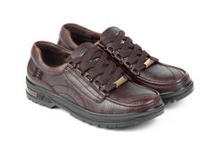 Free Brown Leather Shoes Stock Photos - 16853893