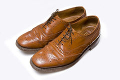 Brown leather shoes Stock Image