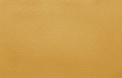 Brown leather skin Royalty Free Stock Photo