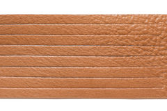 Brown leather straps Royalty Free Stock Photography