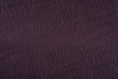 Brown leather surface Stock Photo