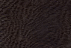 Brown leather texture. For design Royalty Free Illustration