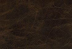 Brown leather texture. For design Stock Image