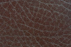 Brown leather texture. Genuine brown leather texture background Royalty Free Stock Photo