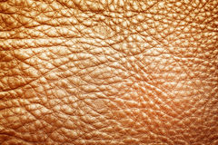 Brown leather texture as background Royalty Free Stock Images