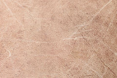 Brown leather texture Stock Photography
