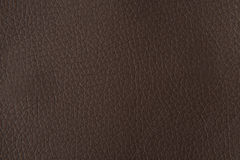 Brown leather texture. For background Stock Image