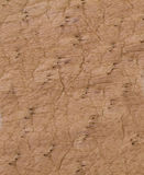 Brown leather texture or background. Abstract Brown leather texture or and background Stock Images