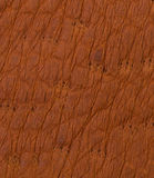 Brown leather texture or background Royalty Free Stock Image