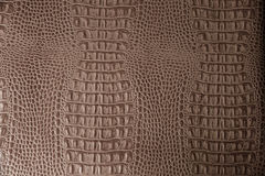 Brown leather texture background close up macro Royalty Free Stock Images