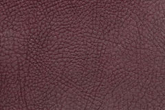 Brown leather texture background. Closeup photo. Dark burgundy leather texture background. Closeup photo. Reptile skin. The skin of a crocodile or a snake royalty free stock photography