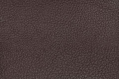 Brown leather texture background. Closeup photo. Reptile skin. Stock Photo