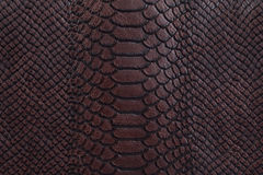 Brown leather texture background Stock Photography