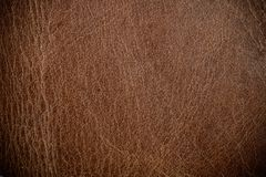 Brown leather texture. Or background for design Stock Photos