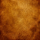 Brown leather texture closeup. Useful as background for design-works Royalty Free Stock Images