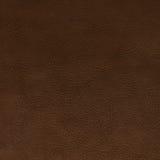 Brown leather texture closeup Stock Image