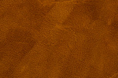 Brown leather Royalty Free Stock Photos