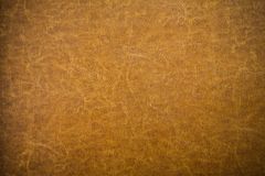 Brown leather texture closeup. Useful as background for design Stock Images