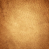 Brown leather texture. Closeup. Useful as background for design-works Royalty Free Stock Images