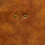 Brown leather texture with rivet to background Royalty Free Stock Photos
