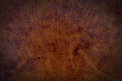 Brown leather texture surface Stock Images