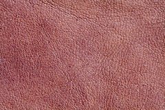 Brown leather textured pattern background. Macro view photo Stock Photos