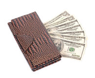 Brown leather wallet with dollar Stock Photos