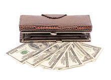 Brown leather wallet with dollar Royalty Free Stock Photos