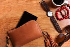 Brown Leather Zip Wristlet stock photography