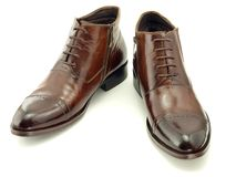 Brown leathers shoes Stock Images