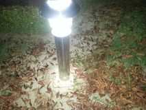 Brown leaves under electric light. A top view of brown leaves under electric light at night Royalty Free Stock Photo