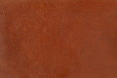 Brown-Leder Lizenzfreie Stockbilder