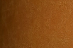 Brown-Leder, braune Haut Stockfoto