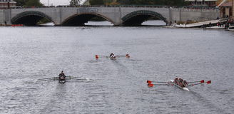 Brown (left) Virginia (center) Syracuse(right) races in the Head of Charles Regatta Women's Youth Fours Royalty Free Stock Images