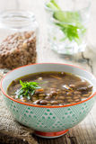 Brown lentil soup with mushrooms in bowl Stock Photography