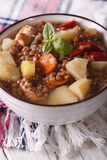 Brown lentil soup with vegetables and meat close up. vertical Stock Images