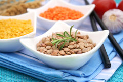 Brown Lentils. Some dry brown lentils with rosemary in a bowl Royalty Free Stock Image