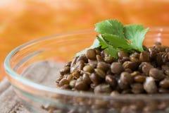 Brown Lentils Stock Image