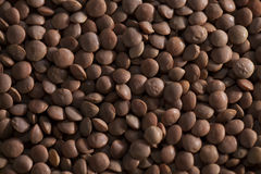 Brown lentils close up Stock Image
