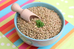 Brown Lentils. Some brown dried lentils in a bowl stock photos