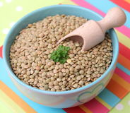 Brown Lentils Royalty Free Stock Image