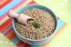 Brown lentils Royalty Free Stock Photos