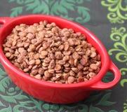 Brown lentils Stock Photos