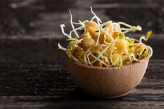 Brown Lentils Sprouts in a Wooden bowl. Close-up of Brown Lentils Sprouts in a Wooden bowl Royalty Free Stock Image