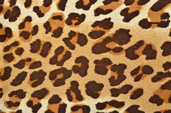 Brown leopard fur pattern. Stock Images