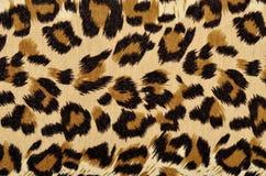 Brown leopard fur pattern. Stock Photo