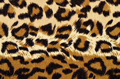 Brown leopard fur pattern. Royalty Free Stock Images