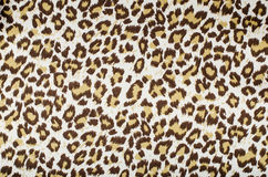 Brown leopard pattern. Animal leopard print as background royalty free stock photo