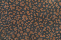 Brown leopard pattern on black. Royalty Free Stock Photo